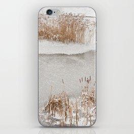 Typha reeds winter season iPhone Skin