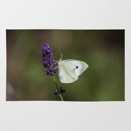 Butterfly on lavender, green blurry background Rug