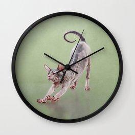 Sphynx kitten Wall Clock
