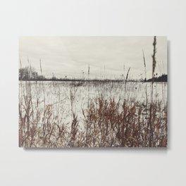 The winter field Metal Print