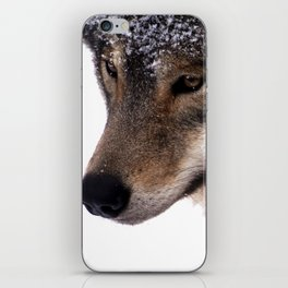 Wolf In the Snow iPhone Skin