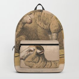 Vintage Domestic Sheep Illustration (1874) Backpack