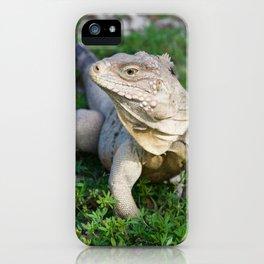 Portrait of a Lizard iPhone Case