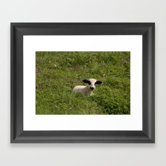 sweet sheep Framed Art Print
