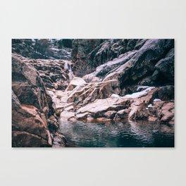 scenic ~ Canvas Print