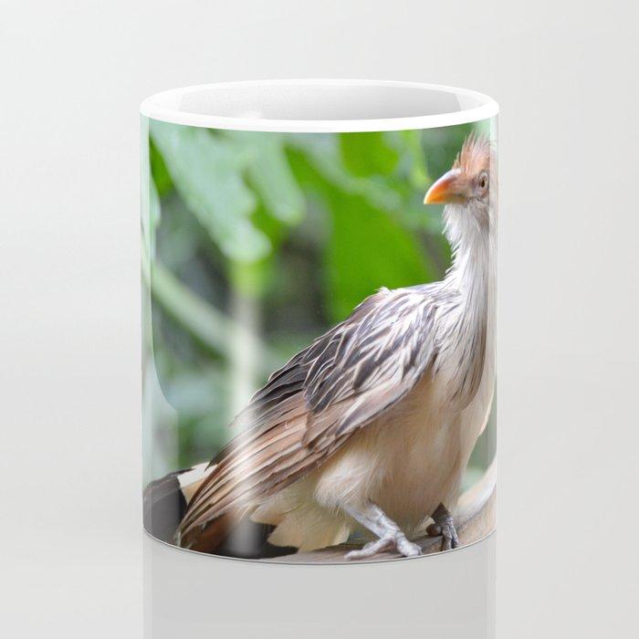 guira cuckoo Coffee Mug