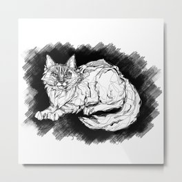 Dio the Maine Coon Metal Print