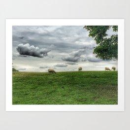 Blenheim Palace Sheep Art Print