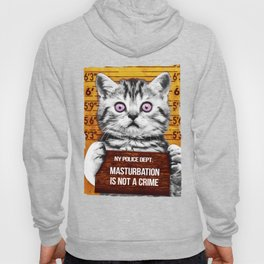 Masturbation is not a crime Hoody