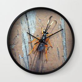 Banded Caterpillar Parasite Wasp Wall Clock
