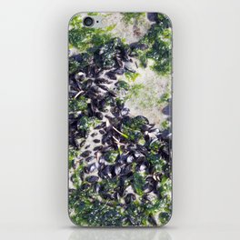 Sea Muscles iPhone Skin