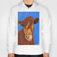 cow Hoodies featuring Cow by maggs326