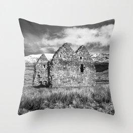 Calda House Monochrome Throw Pillow