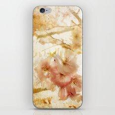 Blossom Crush iPhone & iPod Skin