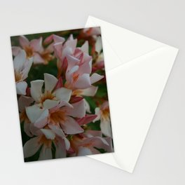 Glorious Caribbean II Stationery Cards