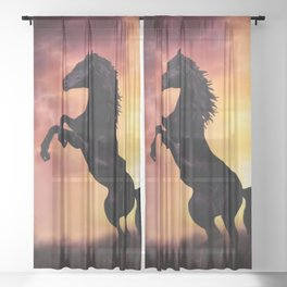 Rearing black horse at sunset Sheer Curtain