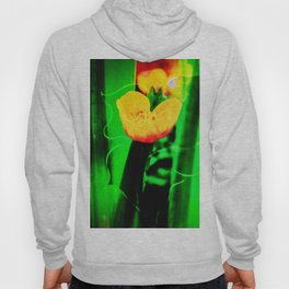 Flowers magic marsh Marigold Hoody