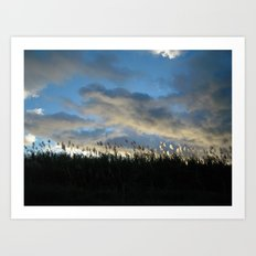 SUGAR CANE SUNSET Art Print