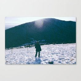 Winters View Canvas Print