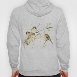 Sparrows on Tree, sparrow bird art decor brown Hoody
