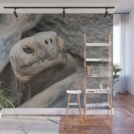 The ancient one Wall Mural