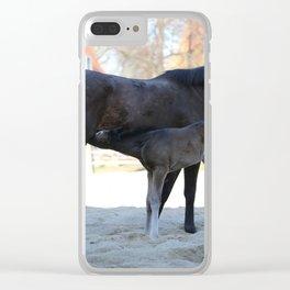 Pferde Clear iPhone Case