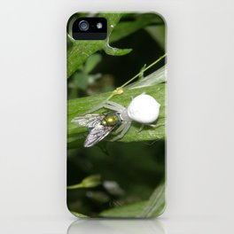 Kiss Me Said The Spider To The Fly iPhone Case