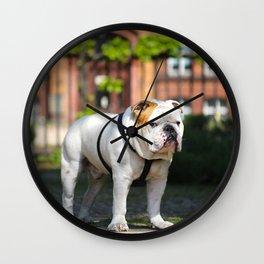 No Entry - Bulldog #decor #homedecor Wall Clock