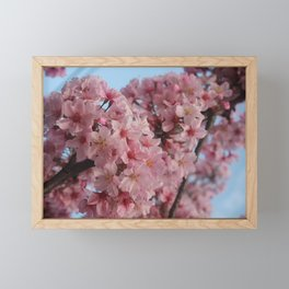 Cherry Tree Framed Mini Art Print