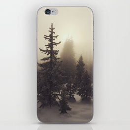Sunlight, Frost and Steam iPhone Skin