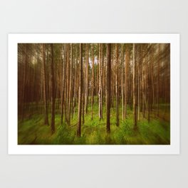Forest Magic Art Print
