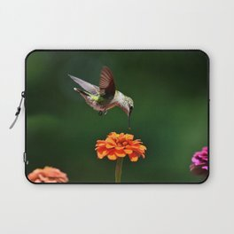Hummingbird Bullseye Laptop Sleeve