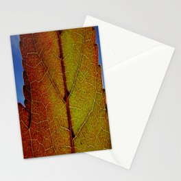 Fall Colors In Southern California Stationery Cards