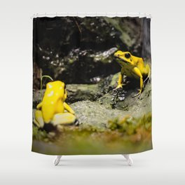 Golden Dart Frog Shower Curtain