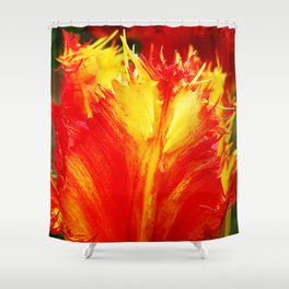 Curly Tulip Red And Yellow Shower Curtain