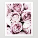 A Cascade of Perfectly Pink Roses by ginajessicasmith
