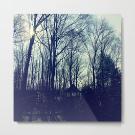 Naked Trees in Maryland Metal Print