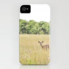 little dear Slim Case iPhone (4, 4s)