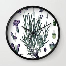 Nature, botanical print, flower poster art of True Lavender Wall Clock