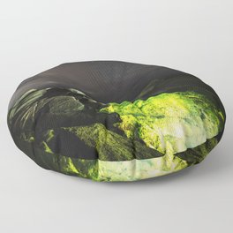 Life Takes Hold Floor Pillow