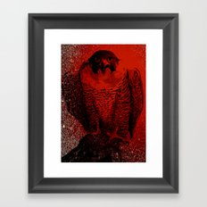 falcon 3 Framed Art Print