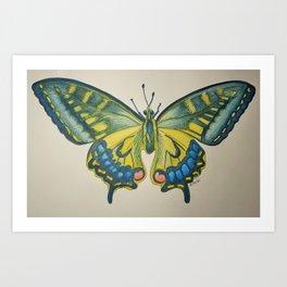 Butterfly no.1 Art Print