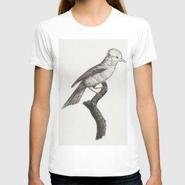 Magnificent bird of paradise female from Histoire Naturelle des Oiseaux de Paradis et Des Rolliers ( T-shirt