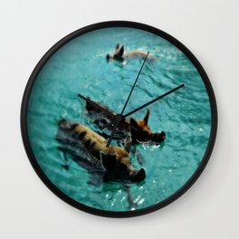 Swimming Pigs In The Exumas, Bahamas, Caribbean  Wall Clock