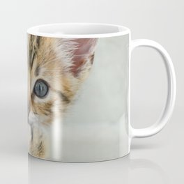 Smirking kitten Coffee Mug