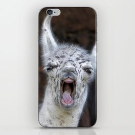 Young Lama with a big mouth | Junges Lama mit grosser Klappe iPhone Skin