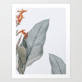 gentle palms Art Print