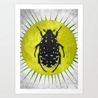 Oxythyrea funesta / Beetle 1 Art Print