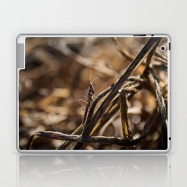 Hidden grashopper Laptop & iPad Skin