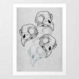 Birds Kunstdrucke